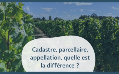 Cadastre, parcellaire, appellation, quelle est la différence ?