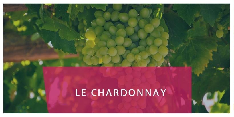 Le Chardonnay