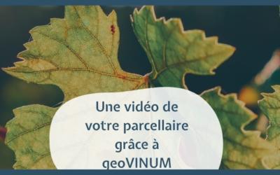 geoVINUM vidéo parcellaire